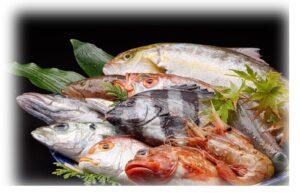 北陸産の新鮮な魚介類