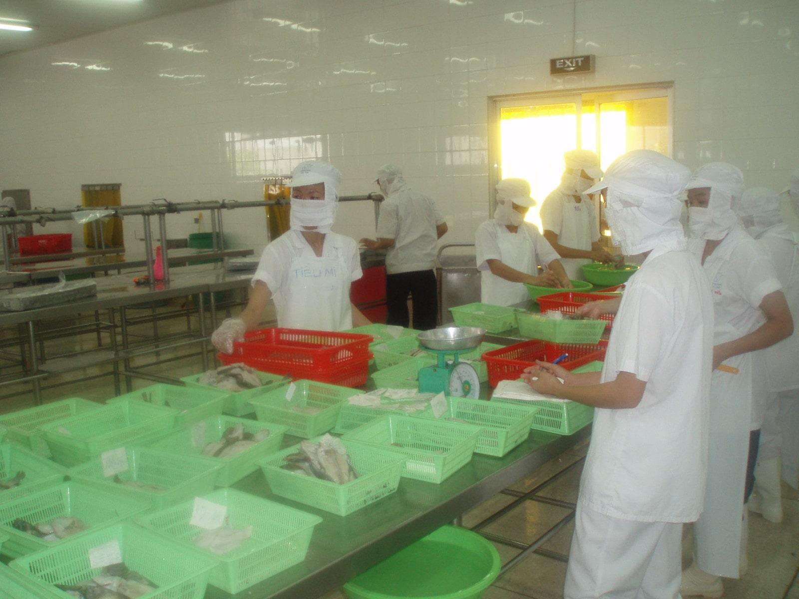ベトナム水産加工場